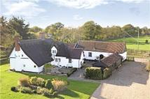 Detached property for sale in Lindsey, Ipswich