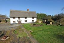 5 bed Detached house in Rectory Road, Bacton...