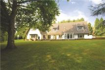 6 bedroom Detached property in Church Hill, Elmswell...
