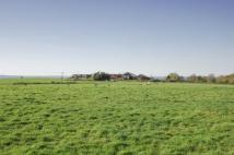 Plot for sale in Haslemere Road...