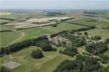 Equestrian Facility home for sale in Manton, Marlborough...