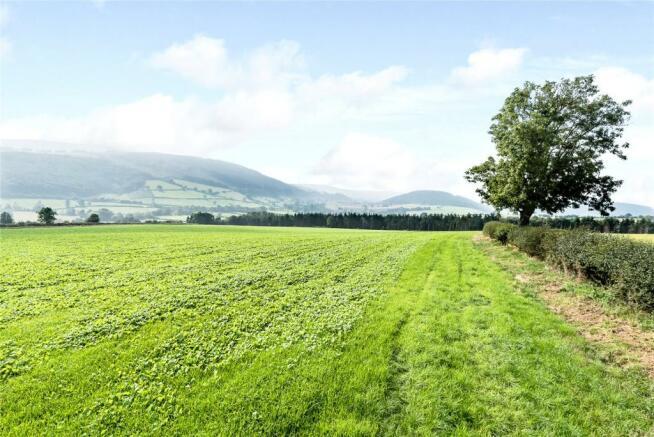 Land (4)