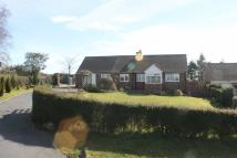 Detached Bungalow in Dhustone Lane, Clee Hill...