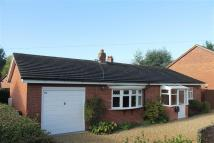 Detached Bungalow for sale in Steventon New Road...