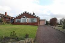 3 bedroom Detached Bungalow in Dhustone Lane, Clee Hill...