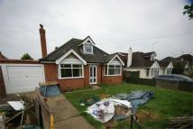 Detached Bungalow to rent in Mill Lane, Earley...