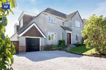 Detached Villa in 11 Blackwood Road...