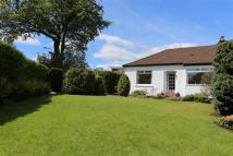 Semi-Detached Bungalow for sale in 57 Kessington Road...