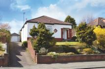 Detached Bungalow for sale in  25 Milngavie Road...