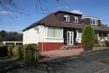 3 bedroom Semi-Detached Bungalow in 42 Campsie Drive...