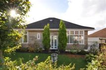 Detached Bungalow in 69 Henderland Road...