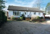 12 Switchback Road Detached Bungalow for sale