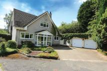 4 bed Detached home in 15 Campsie View Drive...
