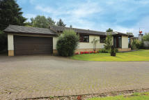Detached Bungalow in 45 Lampson Road...