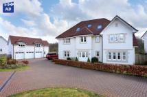 6 bedroom Detached home for sale in  33 Marchfield...