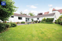 Detached Bungalow for sale in Dunfad Gryffe Road...