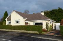 Detached Bungalow in 1 Belmont Road...