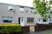 3 bedroom Terraced home for sale in 31 Rowan Road, Linwood...