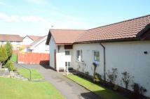 Terraced Bungalow in 43 Corlic Way, Kilmacolm...