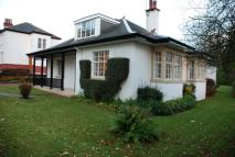 4 bed Detached Bungalow in 'Sunnyvale' 24...