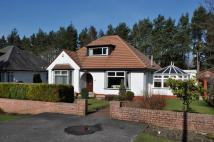 4 bedroom Detached house in 118 Mearns Road...