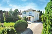 16 Broompark Drive Detached Villa for sale