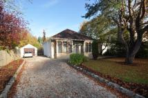 3 bed Detached home for sale in 'Firhurst' 25...