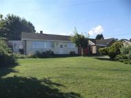 Detached Bungalow to rent in Heath Road, Kenninghall...