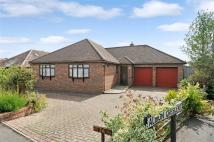 Detached house to rent in 34 Albion Crescent...