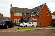 7 Finlayson Place Detached Villa for sale