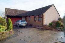 3 bedroom Detached Bungalow in 15 Ferguson Drive...
