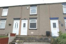 Brynffynnon Terrace Terraced property to rent