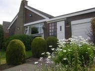 3 bedroom Detached Bungalow in Ffordd Ffynnon, Carmel...