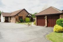 Detached Bungalow in Atis Cross, Oakenholt...