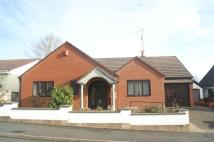 Bungalow in Dawn Close, Buckley...