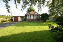 3 bed Detached Bungalow for sale in WHITFORD ROAD, Whitford...
