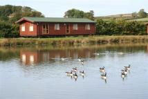 Detached property for sale in Cider Orchard Lodges...