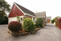 Bungalow for sale in Caradon Drive, Liskeard...