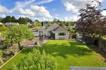 3 bed Bungalow for sale in Ipplepen, Newton Abbot...