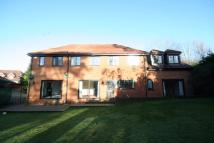 Detached property to rent in St Huberts Close...