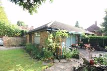 Orchehill Rise Semi-Detached Bungalow to rent