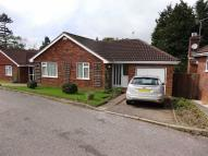 Bungalow for sale in Honiton Town, Honiton...