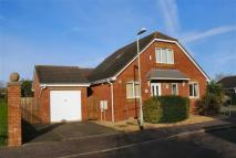 3 bedroom Detached house in Ottery st Mary...