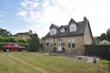 14 Hamilton Drive Detached house for sale