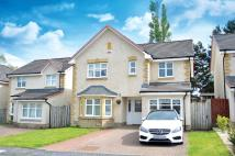 Detached Villa for sale in 11 Langlook Road...