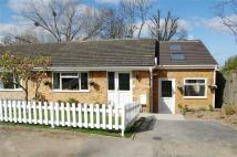 3 bed Semi-Detached Bungalow for sale in Oakhurst Rise...