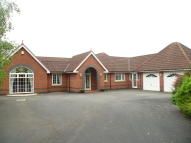 Detached Bungalow to rent in Mountfields...