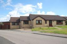 Detached Bungalow in Polwithen Gardens...