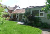 Bungalow to rent in Earlham Road, Norwich
