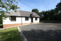 4 bedroom property to rent in Windyknowe, Station Rd...